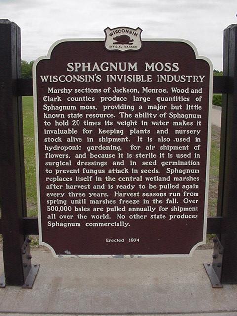 Sphagnum Moss - Wisconsin?s Invisible Industry