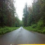 Highway 25.  Very narrow and curvey.  The trees are mossy, and the roadway is lined with Foxglove in many places. It is pretty. If I was going to see a Sasquatch this is where it would have happened.