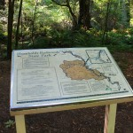 A map marks the beginning of the Avenue of the Giants